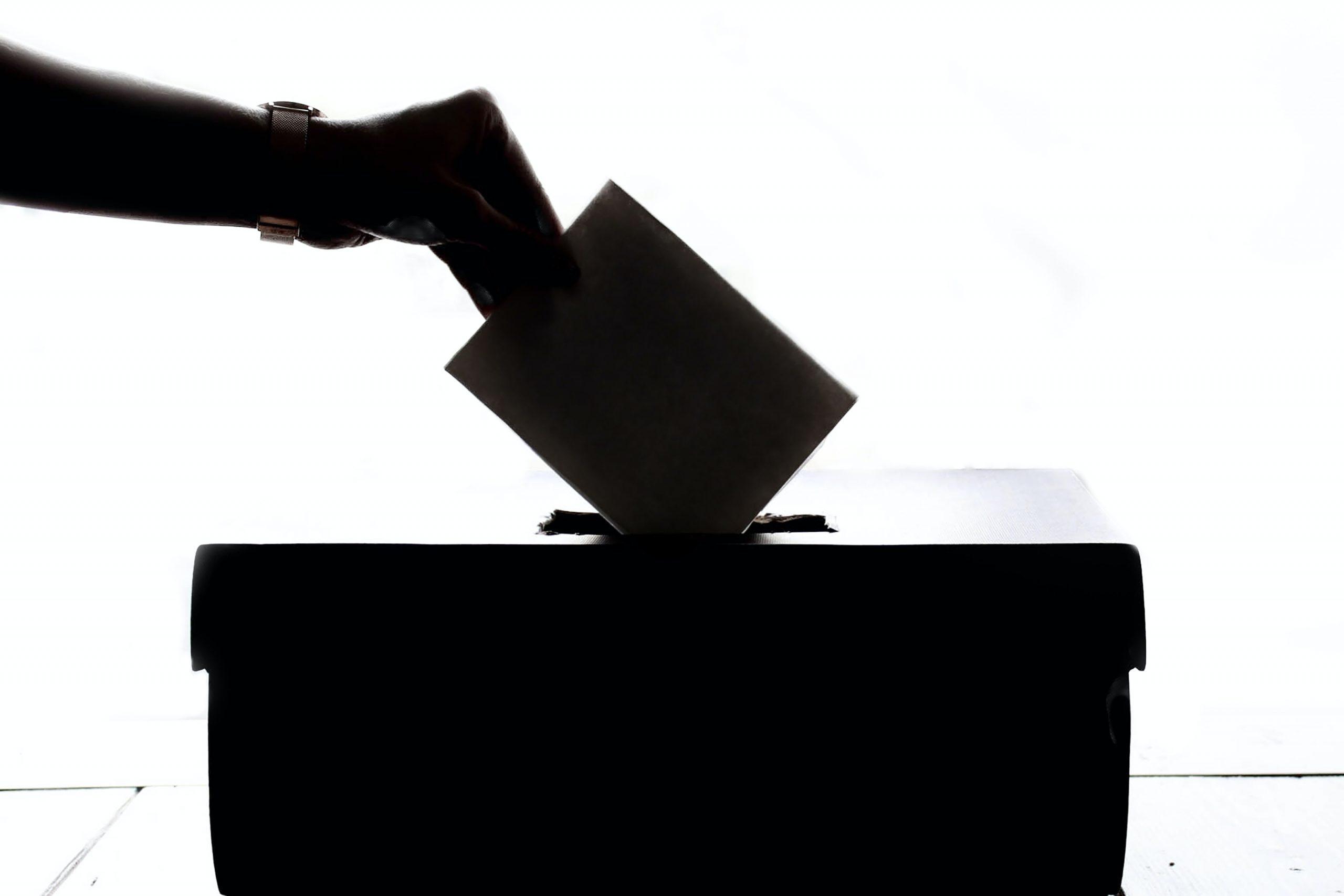 Eleccions al Consell Social (2021)