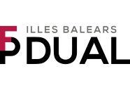 logo dual2
